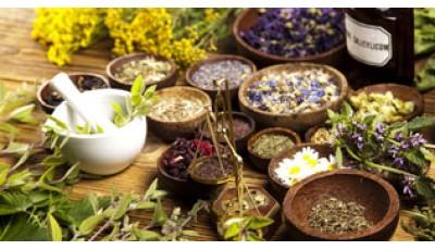 Dravya Guna (Ayurvedic pharmacology)