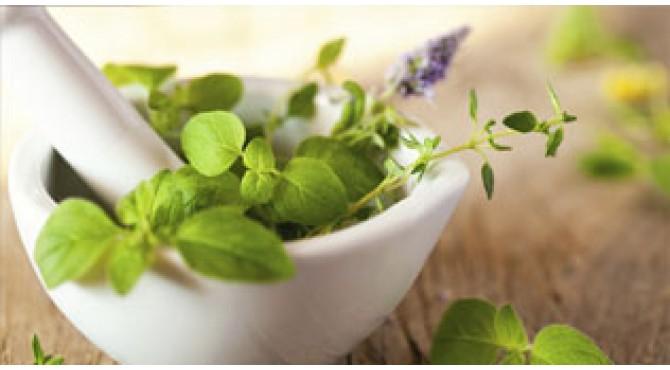 Doctrine of Signature: how to define ayurvedic properties of Western herbs?
