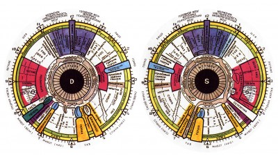 Глаза – зеркало здоровья. Иридодиагностика для всех