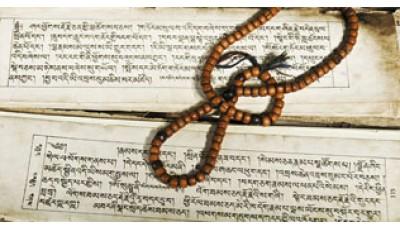 Введение в санскрит