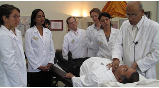 Module 1. Lesson 1. Prakriti, vikruti and organ levels of the pulse
