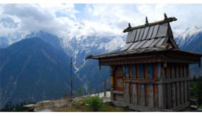 Базовый курс обучения традиционной тибетской медицине